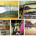 Stage aquarelle avec P.Printemps